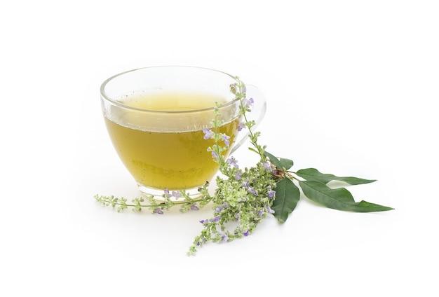 Vijfbladige kuisboom of vitex negundo-bloemen en sap van groene bladeren in een theekop die op wit wordt geïsoleerd