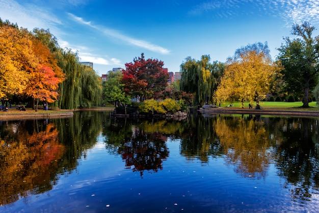Vijver in de gemeenschappelijke die tuin van boston door kleurrijke bomen in dalingsseizoen wordt omringd