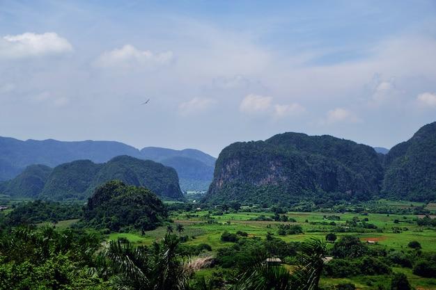 Vinales valley in cuba, nationaal park in de provincie pinar del rio