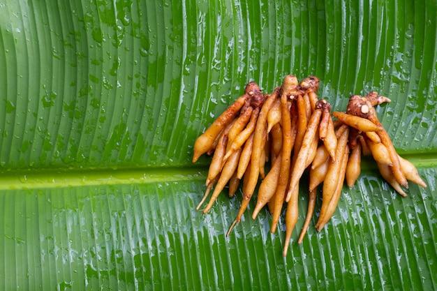Vingerwortel op bananenblad