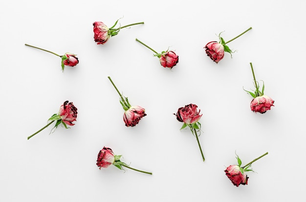 Vintage floral achtergrond gemaakt van gedroogde rode rozen op witte achtergrond