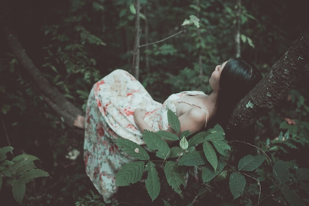 Vintage foto van mooie vrouw op boom in het park