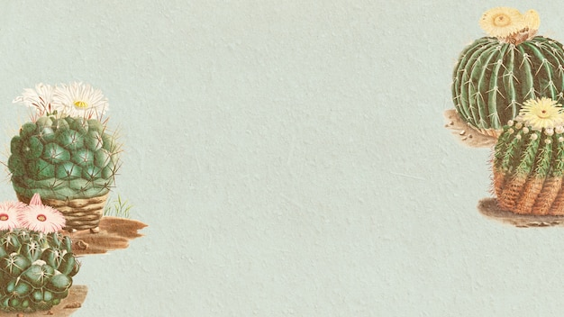 Vintage groene cactus met bloem op papier textuur achtergrond ontwerpelement