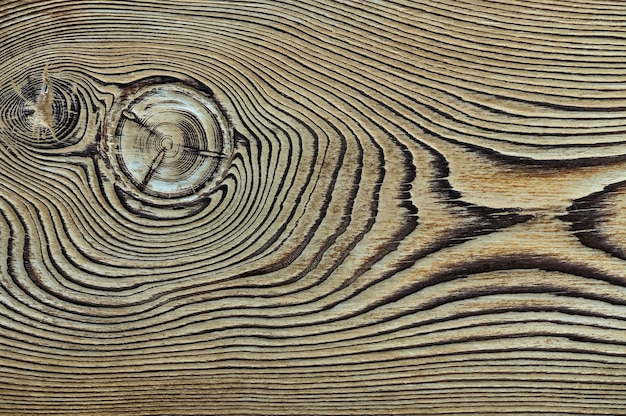 Vintage houtstructuur met knopen close-up bovenaanzicht voor background