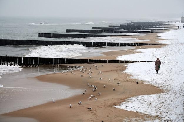 Vintage lange houten golfbrekers die zich uitstrekken tot ver in de zee, winterlandschap van de oostzee