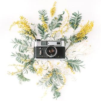 Vintage retro fotocamera, gele acaciabloemen en groene brunches Premium Foto