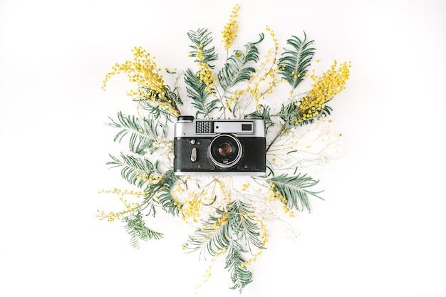 Vintage retro fotocamera, gele acaciabloemen en groene brunches