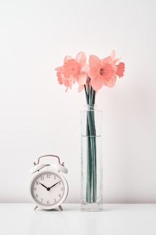 Vintage wekker en narcissen bloemen in vaas op witte achtergrond lente tijdbesparende tijd concept