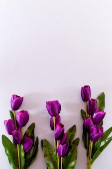Violet tulips flowers spring achtergrond