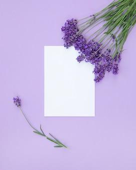 Violette bloemen blanco papieren kaartmodel op lila achtergrond wenskaart bovenaanzicht plat leggen