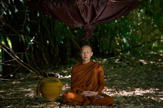 Vipassana-meditatie het is de activiteit van de monniken die in het boeddhisme moet worden gedaan.