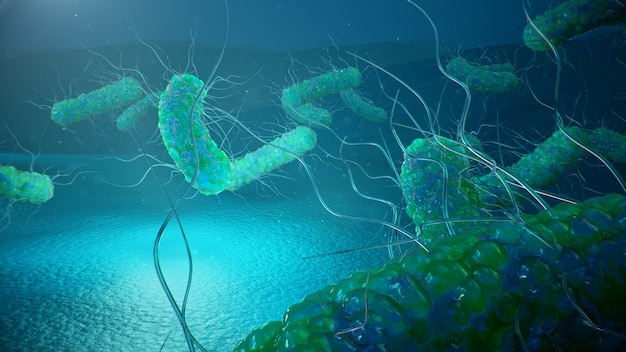 Virussen die infectieziekten veroorzaken, verminderde immuniteit. cel infecteert organisme. abstracte bacteriën.