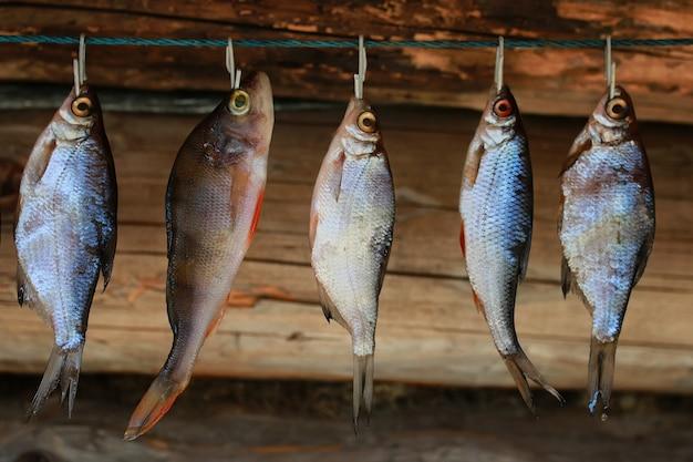 Vis drogen aan touw