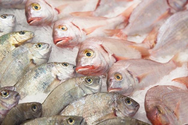 Vis, ijs, markt, selectie, aankoop, kwaliteit, plat