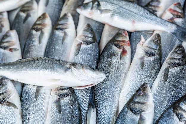 Vis op het aanrecht in de markt. achtergrond. ruimte voor tekst.