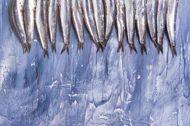 Vis patroon. verse ansjovis op blauw