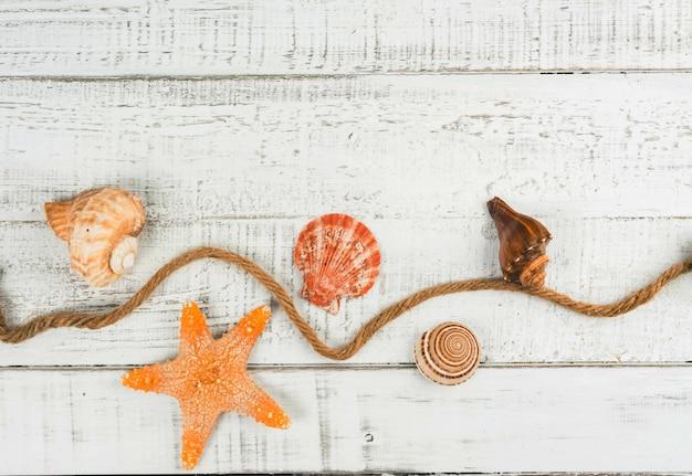 Vis ster en zeeschelpen op de houten achtergrond