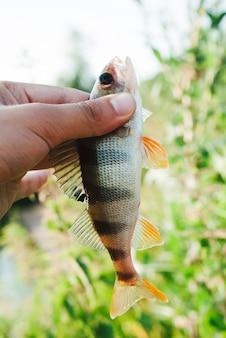 Visser die gevangen vissen tegen vage achtergrond toont