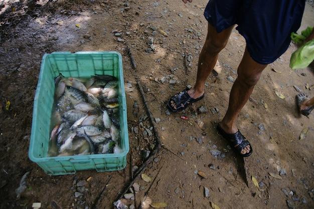 Visser met vangsten in een plastic doos vol met vis