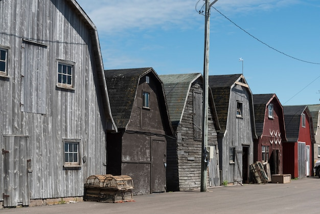 Vissersloodsen in de haven, lot 18, prince county, prince edward island, canada