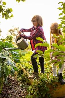 Vitaminen. gelukkig broer en zus appels in een tuin samen buiten verzamelen.