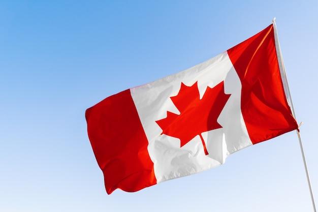 Vlag van canada die tegen duidelijke blauwe hemel golven