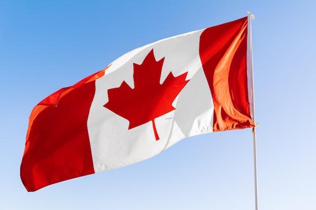 Vlag van canada zwaaien tegen blauwe hemel