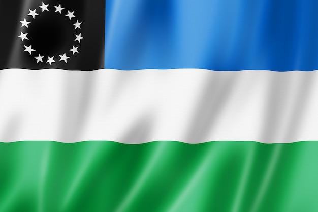 Vlag van de provincie rio negro, argentinië zwaaiende banner collectie. 3d illustratie