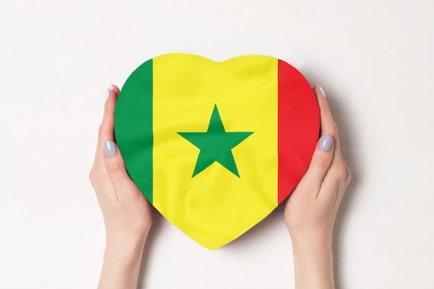 Vlag van senegal op een hartvormige doos in een vrouwelijke handen. witte achtergrond