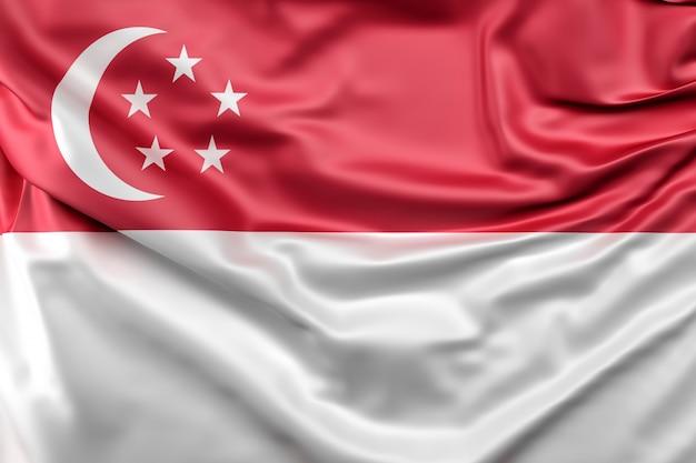 Vlag van singapore