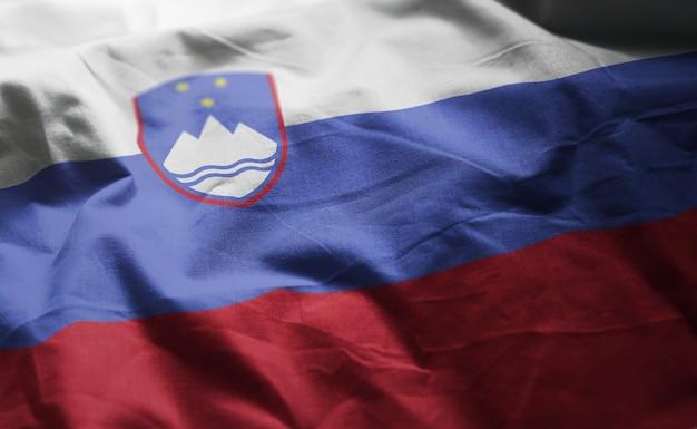 Vlag van slovenië verkreukelde close-up