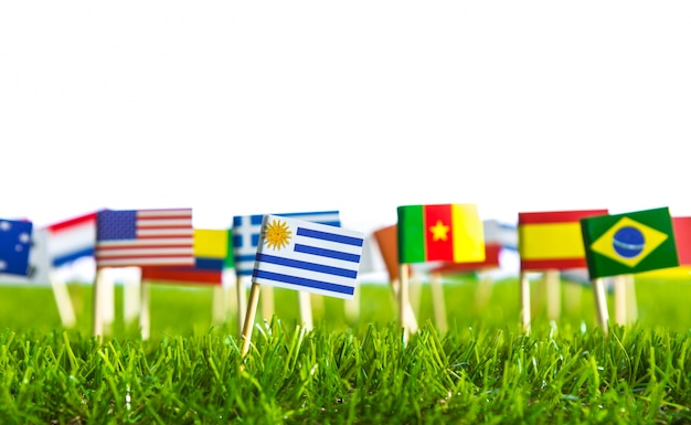 Vlaggen van verschillende landen doorboord op een grasveld