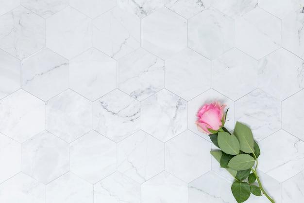 Vlak leg van bloemen met copyspace