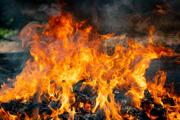 Vlam vuur brandende vuilnis op zwarte achtergrond