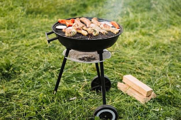 Vlees op barbecuegrill in aard