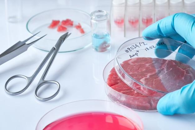 Vleesmonster in open plastic wegwerpcelkweekschaal in modern laboratorium of productiefaciliteit