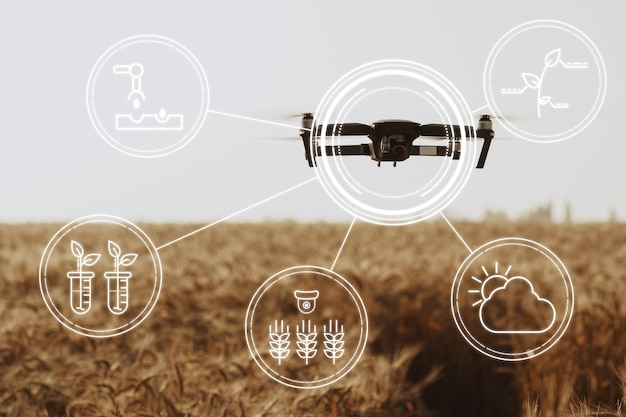Vliegende drone boven het concept van landbouw- en technologie-innovaties in tarweveld
