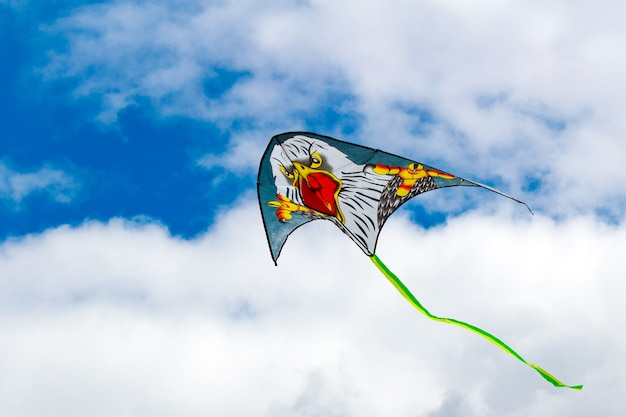 Vliegende vlieger op een blauwe hemel