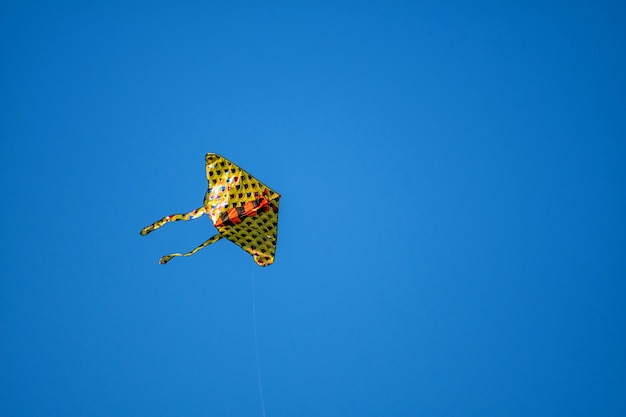 Vlieger op de blauwe lucht.