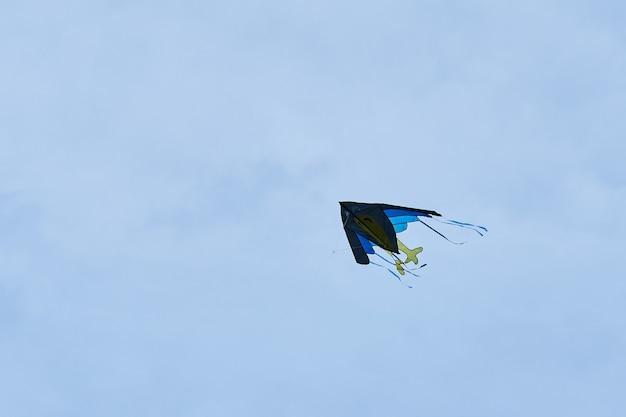 Vliegeren in de lucht