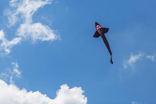 Vliegers in verschillende vormen