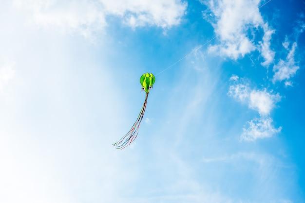 Vliegers kleuren in de blauwe lucht