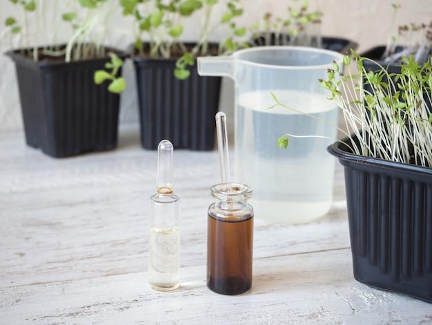 Vloeibare meststof voor zaailingen. lente verzorging van planten. groei-energie voor planten.