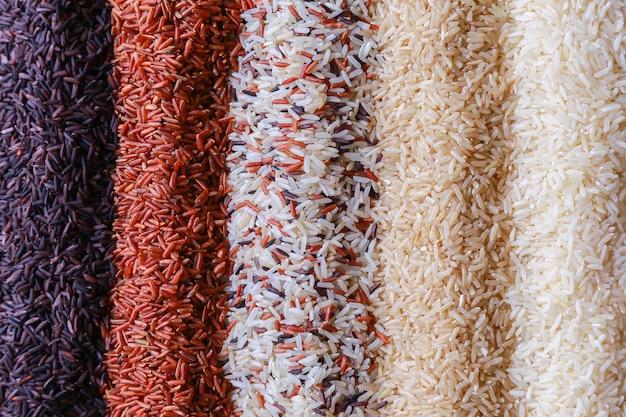 Voedselachtergrond met hoogste mening van vijf rijen van rijst.
