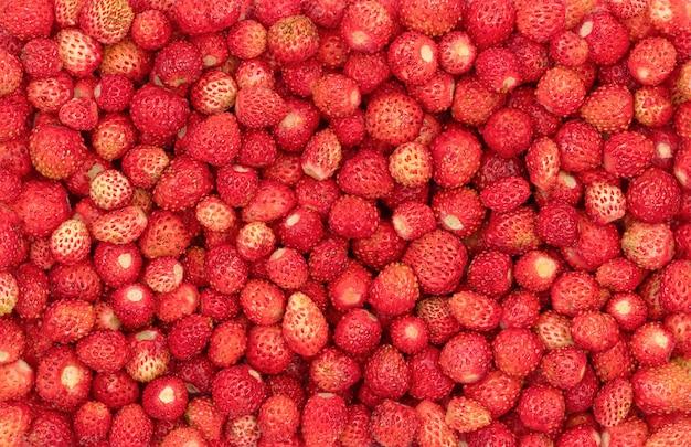 Voedselachtergrond van wilde aardbeien