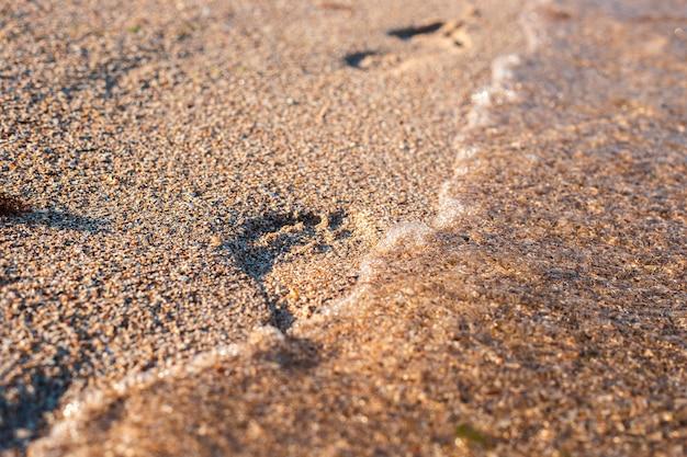 Voetafdruk op het zandstrand wordt gewassen door de golf.