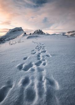 Voetafdruk van bergbeklimmer op sneeuwheuvel en besneeuwde bergketen
