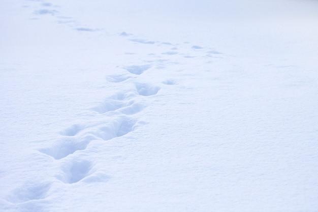 Voetafdrukken achtergelaten in de sneeuw besneeuwde winterachtergrond