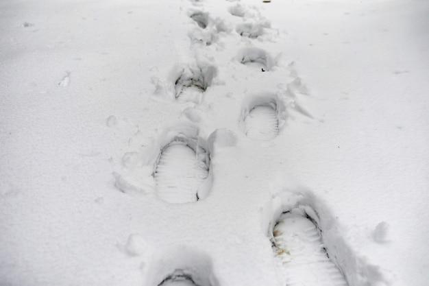 Voetafdrukken in de sneeuw. voetafdrukken op de eerste sneeuw. afdruk van schoenen en voetafdrukken van dieren en vogels in de sneeuw.