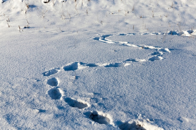 Voetafdrukken in diepe sneeuwbanken in het winterseizoen, de sporen werden vertrapt door mensen tijdens het rijden